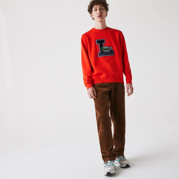 new collcetion image
